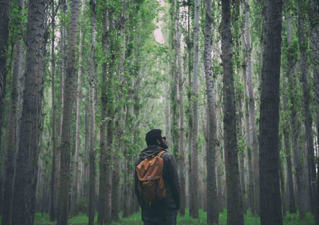 trekking di sentul bogor