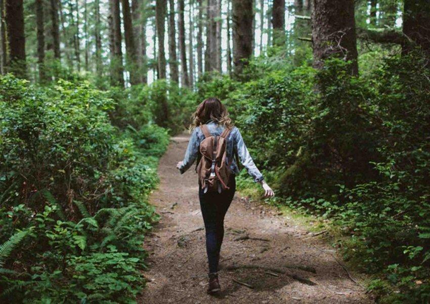 pengertian hiking dan tempatnya di sentul