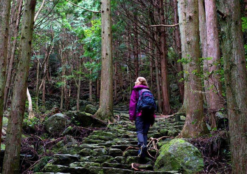 pengertian trekking dan tempatnya di sentul